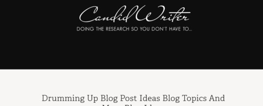 Custom WordPress Theme Used For Blogging Tips